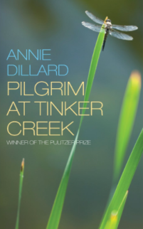 Pilgrim at Tinker Creek